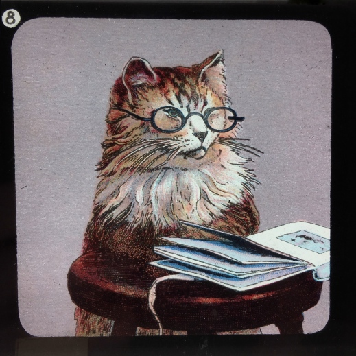 a magic lantern slide showing a learned cat
