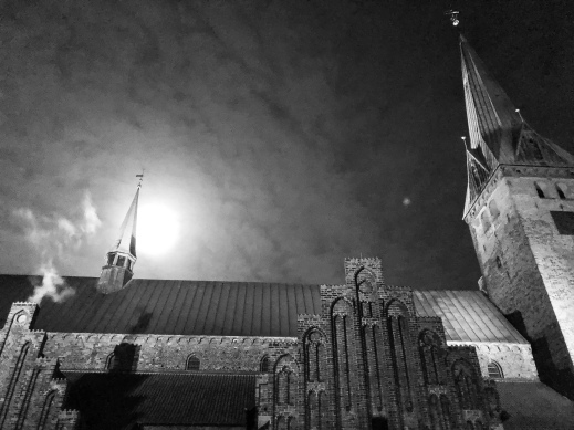 Elsinore church and a full moon at night